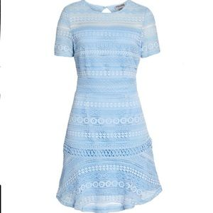 NWTs CHELSEA28 • Lace Light Blue Flare Dress
